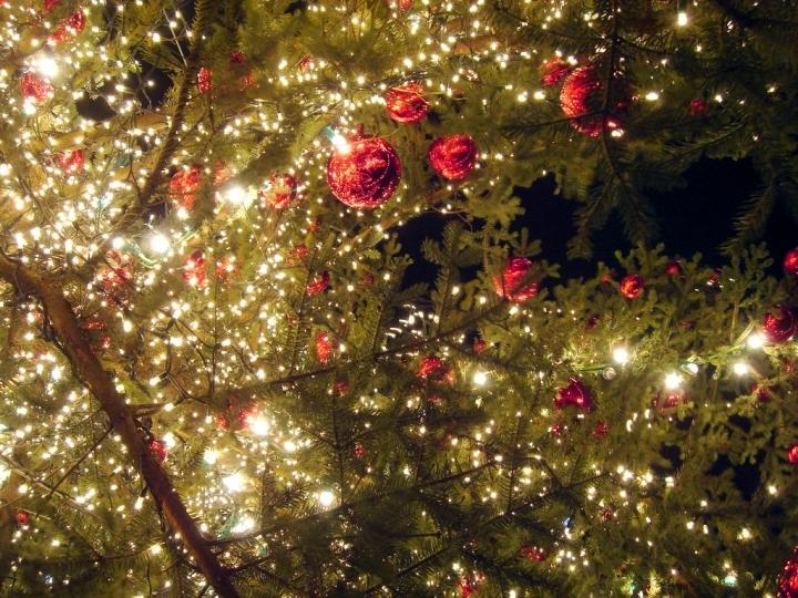 Mercatini di Natale a Mantova e Provincia Foto